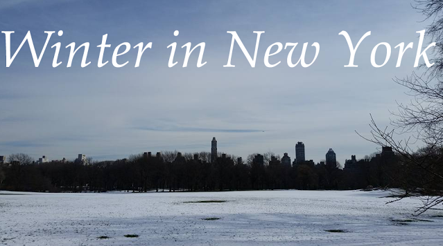 New York in Winter: 10 things to see and do