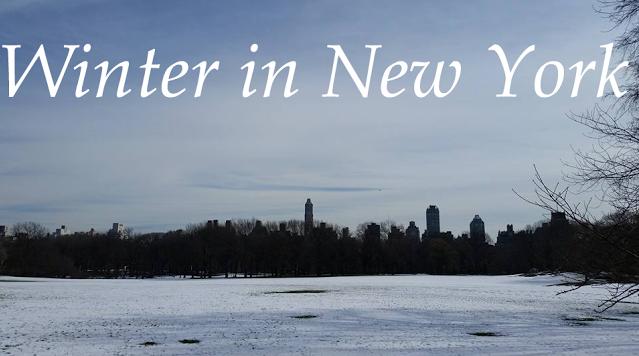 Winter-in-New-York