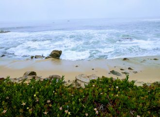 A weekend in Monterey and Carmel-by-the-sea
