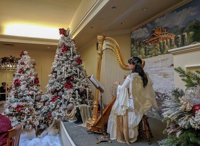 San Francisco Christmas Activities