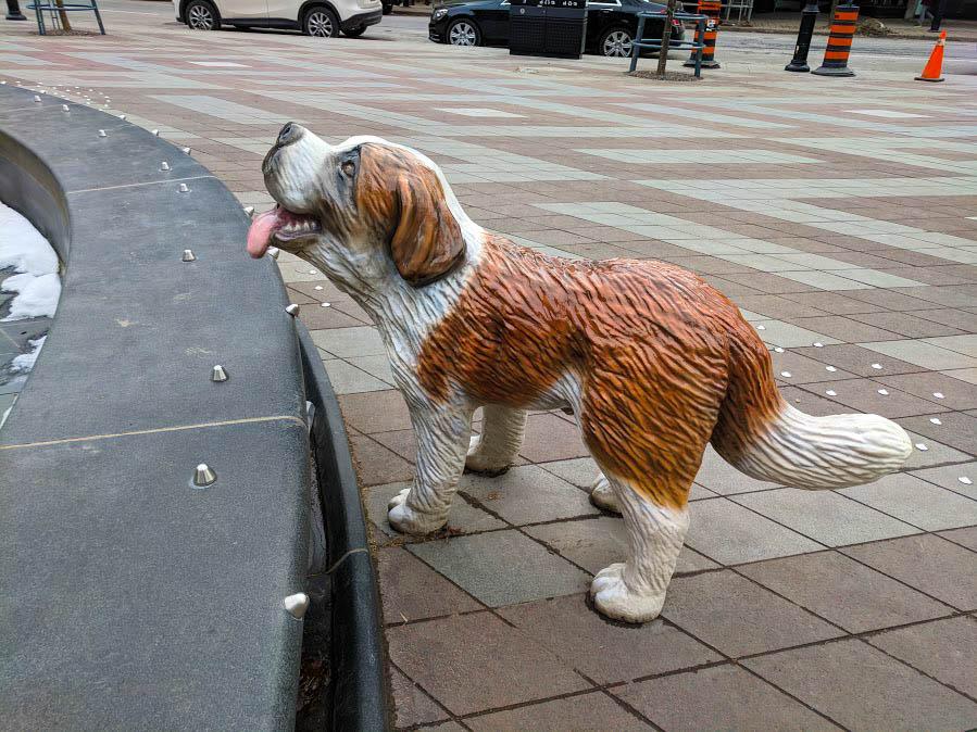 Dog Fountain in Toronto