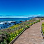 Best things to do in Cambria