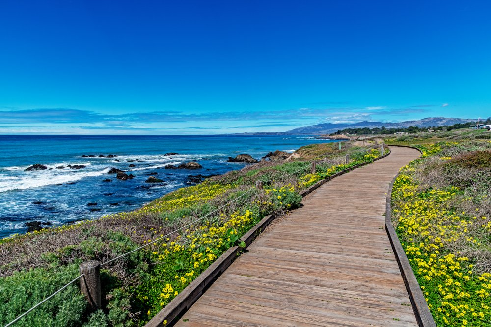 The best things to do in Cambria