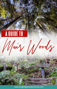 A guide to #SanFrancisco's #MuirWods including how to get there and parking information