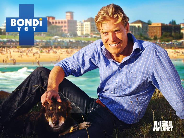 Bondi Vet promotional image