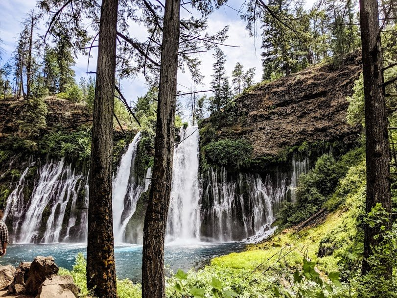 Water falling off cliff into a pool with trees in foreground